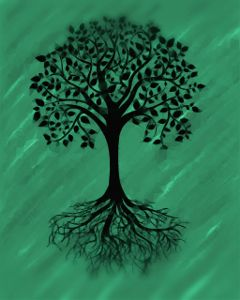 tree green drawing draw treeoflife