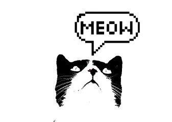 freetoedit remixit remixed cats picsart
