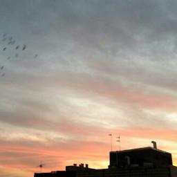 sunset free