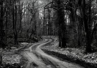 photography blackandwhite freetoedit