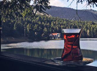 landscape tea home turkey travel