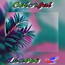 leaves colorfulleaves freetoedit