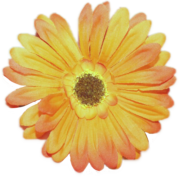 #FreeToEdit #ftestickers #flower
