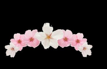 cherry flower hats freetoedit